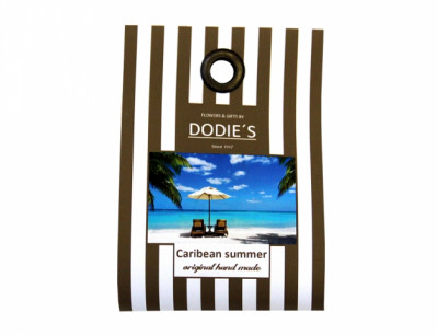 Vosk palmový CARIBBEAN SUMMER kokos 4ks 25g