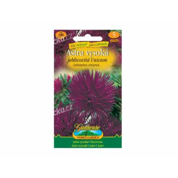 Osivo Astra vysoká jehlicovitá UNICUM, fialová - VÝPRODEJ