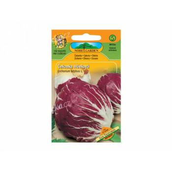 Osivo Čekanka salátová hlávková, červená - VÝPRODEJ