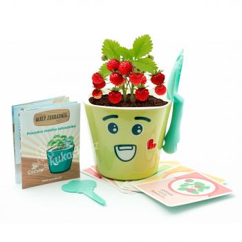 Vypěstuj si jahůdky - dětská sada pro pěstování jahod se samozavlažovacím květináčem a výukou angličtiny, zelená, CUCULO
