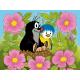 Krtek a ptáček Kubus 12K foto