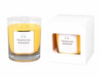 Svíčka ve skle PARFUME NO.10 Tropické Mango vonná 250g