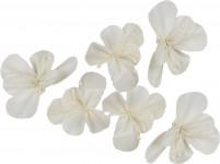Dekorace - Sola China Flower 6 cm - 6 ks