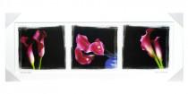Obraz Růžové kaly v bílém rámu 2100 - VÝPRODEJ