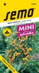 Semo Rajče keříčkové převislé - Tumbling Tom yellow 10s - série Mini