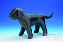 Prezentační pes kůže - velký Nobby 1 ks