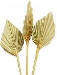 Dekorace - Palmový list ve tvaru oštěpu 4 ks