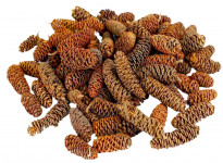 Dekorace - Birch pine min. 30 g