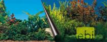 Pozadí akvarijní Beauty+Sea Duvo+ 80 x 40 cm