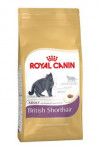 Royal Canin Feline BREED British Shorthair 2 kg - VÝPRODEJ