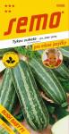 Semo Tykev cuketa - Bush Baby F1 sv.zelená s b. pruhy 1,2g - série Pro mlsné jazýčky