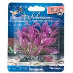 Rostlina plast Cuba Flamingo 9 cm - VÝPRODEJ