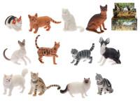 Kočka domácí / divoká 5-7 cm - mix variant či barev