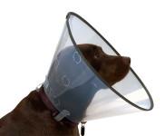 Límec Buster Comfort - clic collar 20cm 273904 - VÝPRODEJ