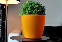 Samozavlažovací květináč GreenSun AQUAS průměr 22 cm, výška 21 cm, oranžový