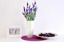 Vypěstuj si levanduli, samozavlažovací květináč bílý 12 / 23 cm, Domestico