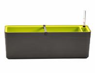 Truhlík samozavlažovací BERBERIS plastový 60x20x20cm