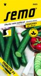 Semo Okurka salátová do skleníku - Tribute F1 velmi dl 10s - VÝPRODEJ