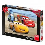 Walt Disney Cars 3: Na pláži 24D