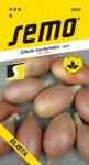 Semo Cibule jarní - Elista žlutá, salátová 1,5g - VÝPRODEJ