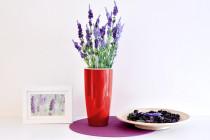 Vypěstuj si levanduli, samozavlažovací květináč červený 12 / 23 cm, Domestico