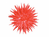 Květ voskový JIŘINA KAKTUS červený 15cm