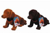 Pes s kývací hlavou, 27cm, 2sort - mix variant či barev