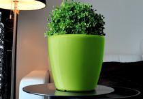 Samozavlažovací květináč GreenSun AQUAS průměr 22 cm, výška 21 cm, zelený