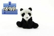 Panda plyš 14cm