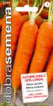 Dobrá semena Mrkev - Autumn King 2 (Vita Longa) pozdní 3g - VÝPRODEJ