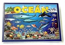 Oceán 4 logické hry společenská hra