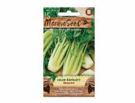 Osivo Celer řapíkatý MALACHIT, zelený - VÝPRODEJ