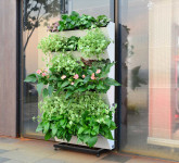 Set 6 ks truhlíků se stojanem pro vertikální zahradu, GreenSun