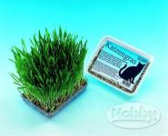 Tráva pro kočky Nobby 100 g